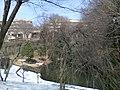 法政大学の池 - panoramio.jpg