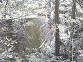 砂防ダム - panoramio.jpg