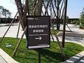 鄠邑渼陂湖公园 11.jpg