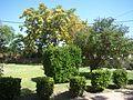 02 Aldea de San Miguel Iglesia entorno Lou.jpg