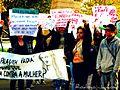 1ª Marcha das Vadias de Esteio-RS-BR.JPG
