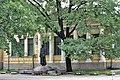 12-101-0042 могила Яворницького.jpg