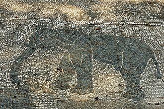 North African elephant - Roman mosaic at Ostia Antica, Italy