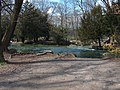 2007Englischer Garten6.jpg