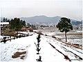 2008冰灾过后 - panoramio (1).jpg