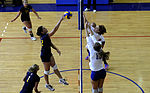 2013 Armed Forces Volleyball Championship 130508-F-CF799-317.jpg