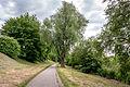 20150522 Blick - Baumbestand am Moselradweg Trier - IMG 4475 by sebaso.jpg