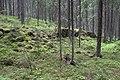 2016 06 Lammelan muinaislinna 05.jpg