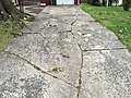 2017-09-05 18 22 55 Concrete driveway severely cracked and buckled by tree roots along Glen Mawr Drive in Ewing Township, Mercer County, New Jersey.jpg