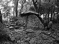 20180603 - Dolmen de la Siureda 1.jpg
