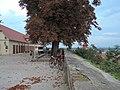 2250 Ptuj, Slovenia - panoramio (3).jpg