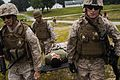 22nd MEU participates in mass casualty evacuation training 130828-M-HZ646-038.jpg