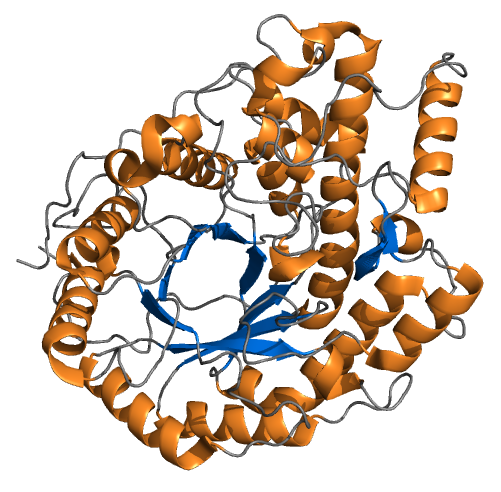 enzyme amylase Any of a class of enzymes that split or hydrolyze starch those found in animals are called alpha-amylases those in plants, beta-amylases serum levels of amylase become elevated in mumps, pancreatitis, and intraperitoneal organ rupture, among other diseases and conditions.