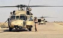 301st RQS Pave Hawks at Tallil Air Base.jpg