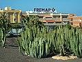 35600 Puerto del Rosario, Las Palmas, Spain - panoramio.jpg