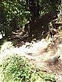 3700 São João da Madeira, Portugal - panoramio - cipriwarrior (6).jpg