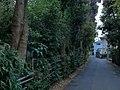 4 Chome Sazumachi, Chōfu-shi, Tōkyō-to 182-0016, Japan - panoramio (1).jpg