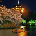58 Honmokusannotani, Naka-ku, Yokohama-shi, Kanagawa-ken 231-0824, Japan - panoramio (1).jpg
