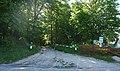 68-252-5002, івахновецький ліс.jpg