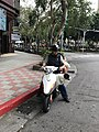 A Couple with Dog on Motorcycle in Songshan District, Taipei 20180404.jpg