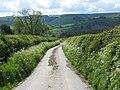 A Little Overgrown - geograph.org.uk - 807340.jpg