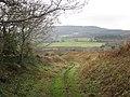 A green lane descends towards Mowlish - geograph.org.uk - 1623556.jpg