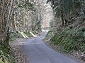 A quiet lane winds up a hillside - geograph.org.uk - 1232260.jpg