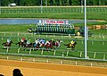 A race at Colonial Downs in New Kent County, Virginia 2019.jpg