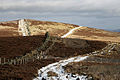 A track on Fastheugh Hill - geograph.org.uk - 1140476.jpg