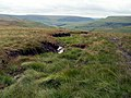 A watercourse on Hey Moss - geograph.org.uk - 486239.jpg