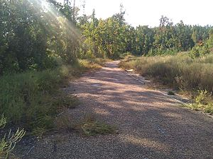 U.S. Route 84 - Abandoned section of US 84 east of Jena