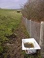 Abandoned bathtub below Poundbury hillfort - geograph.org.uk - 96541.jpg