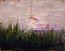 Abbott Handerson Thayer - Roseate Spoonbill, study for book Concealing Coloration in the Animal Kingdom - 1950.2.4 - Smithsonian American Art Museum.jpg