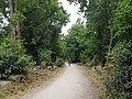 Abney Park – 20180710 111911 (41508820370).jpg