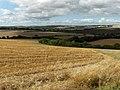 Above Eastbury - geograph.org.uk - 230195.jpg