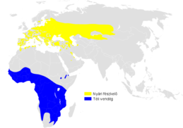 Acrocephalus arundinaceus distribution map.png