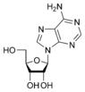 Estructura química de adenosina