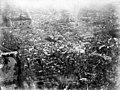 Aerial view of Paris from Henri Giffard's balloon, 1878.jpg