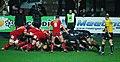 Aironi vs Scarlets - panoramio (1).jpg