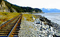 Alaska Railroad at the Turnagain Arm.jpg