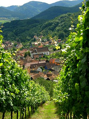 Albé, Bas-Rhin, Alsace, France.