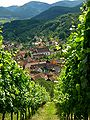 Albé, like a dream of Alsace.jpg