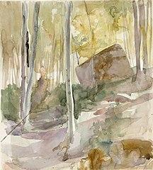 Metsänsisusta, suuri kivi