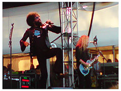 Alice in Chains Soundwave 2009.jpg