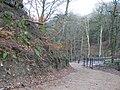 Alum Scar wood - panoramio (8).jpg