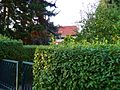 Am Osthang, Pirna 122477200.jpg