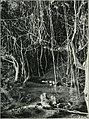 Am Tendaguru - Leben und Wirken einer deutschen Forschungsexpedition zur Ausgrabung vorweltlicher Riesensaurier in Deutsch-Ostafrika (1912) (18165284345).jpg