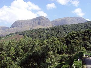 Eravikulam National Park - Anamudi, on the right, in the Eravikulam National Park