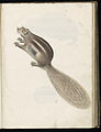 Animal drawings collected by Felix Platter, p2 - (120).jpg