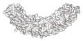 Ankyrin R membrane-binding domain 1N11 surface.png